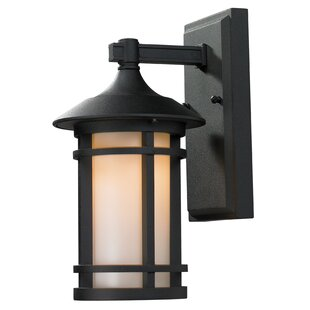 McKew Outdoor Wall Lantern