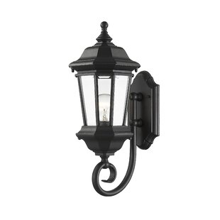 Bibb 1-Light Outdoor Wall Lantern