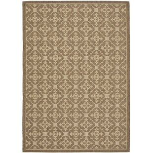 Short Brown / Creme Indoor/Outdoor Area Rug