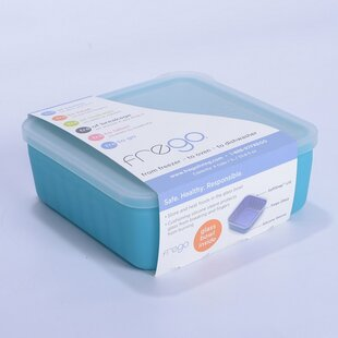 Glass and Silicone Toxin free 20 Oz. Food Storage Container