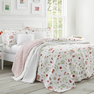 Libby Cotton Quilt Set by Laura Ashley Home