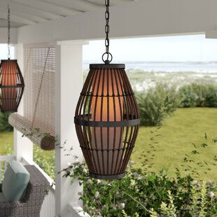 Beachcrest Home Sol 1-Light Outdoor Pendant