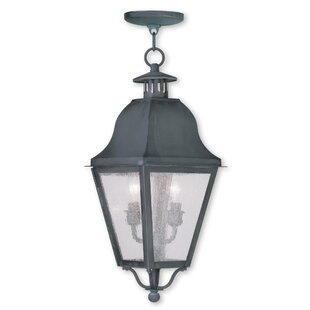 Goodhue 2-Light Outdoor Hanging Lantern