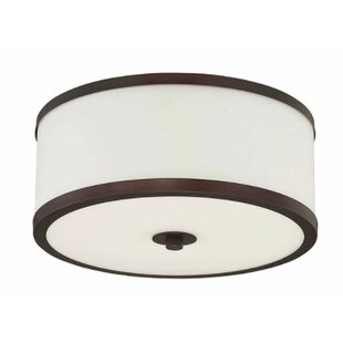 Breakwater Bay Ecklund 2-Light Flush Mount