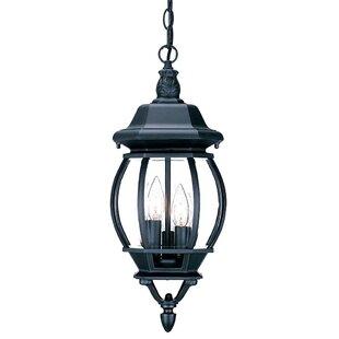 Fleur De Lis Living Reva 3-Light Outdoor Hanging Lantern