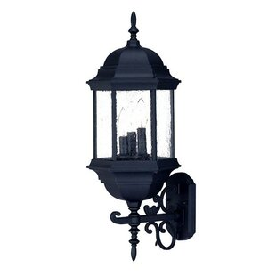 Charlton Home Pruitt 3-Light Outdoor Sconce