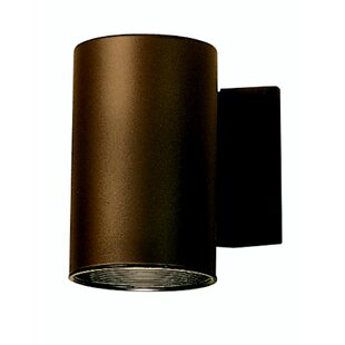 Looking for Suri 1-Light Outdoor Sconce By Wade Logan