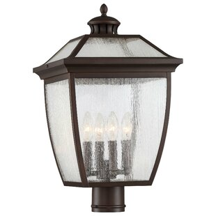Auer 4-Light Lantern Head by Darby Home Co