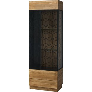 Morgan Standard Display Cabinet By Williston Forge