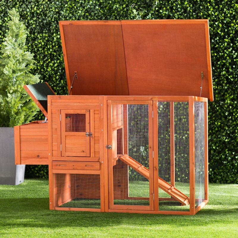 Freddy Chicken Coop with Chicken Run/Nesting Box/Roosting Bar
