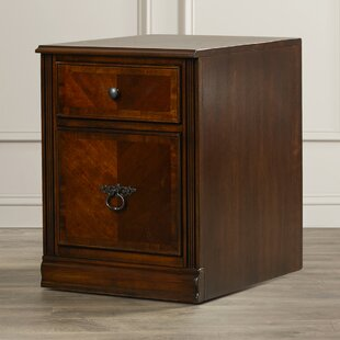 Rossana 2 Drawer File Cabinet