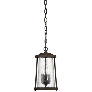 Darby Home Co Creissant 3-Light Outdoor Hanging Lantern