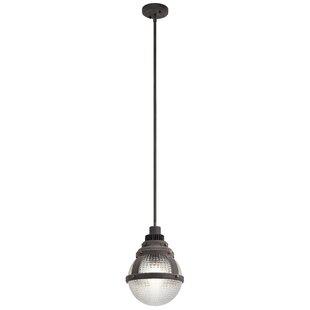 Gavin 1-Light Globe Pendant by Kichler