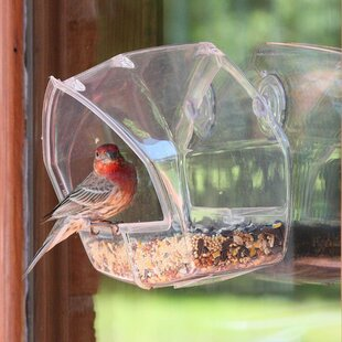 Birdscapes Window Decorative Bird Feeder