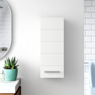 Jeannette 25cm X 64cm Wall Mounted Cabinet By Zipcode Design