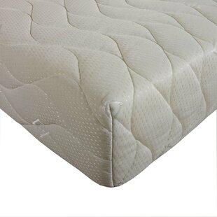 Kirchner Orthopaedic Reflex Foam Mattress By Symple Stuff