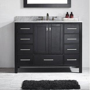 Pichardo 48 Single Bathroom Vanity Set by Brayden Studio