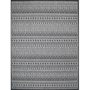 Starr Gray Indoor/Outdoor Area Rug