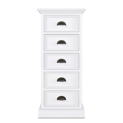 Amityville 5 Drawer Accent Chest by Beachcrest Home