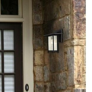 Necaise 1-Light Outdoor Wall Lantern