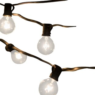 Jaime 50-Light 50 ft. Globe String Lights By Laurel Foundry Modern Farmhouse Outdoor Lighting