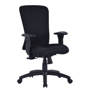 Agalia Ergonomic Executive Chair By Ebern Designs