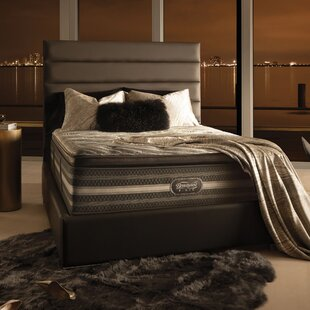 Beautyrest Black Natasha 16