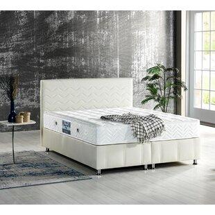 Linzy Storage Sleigh Bed with Mattress by Ebern Designs
