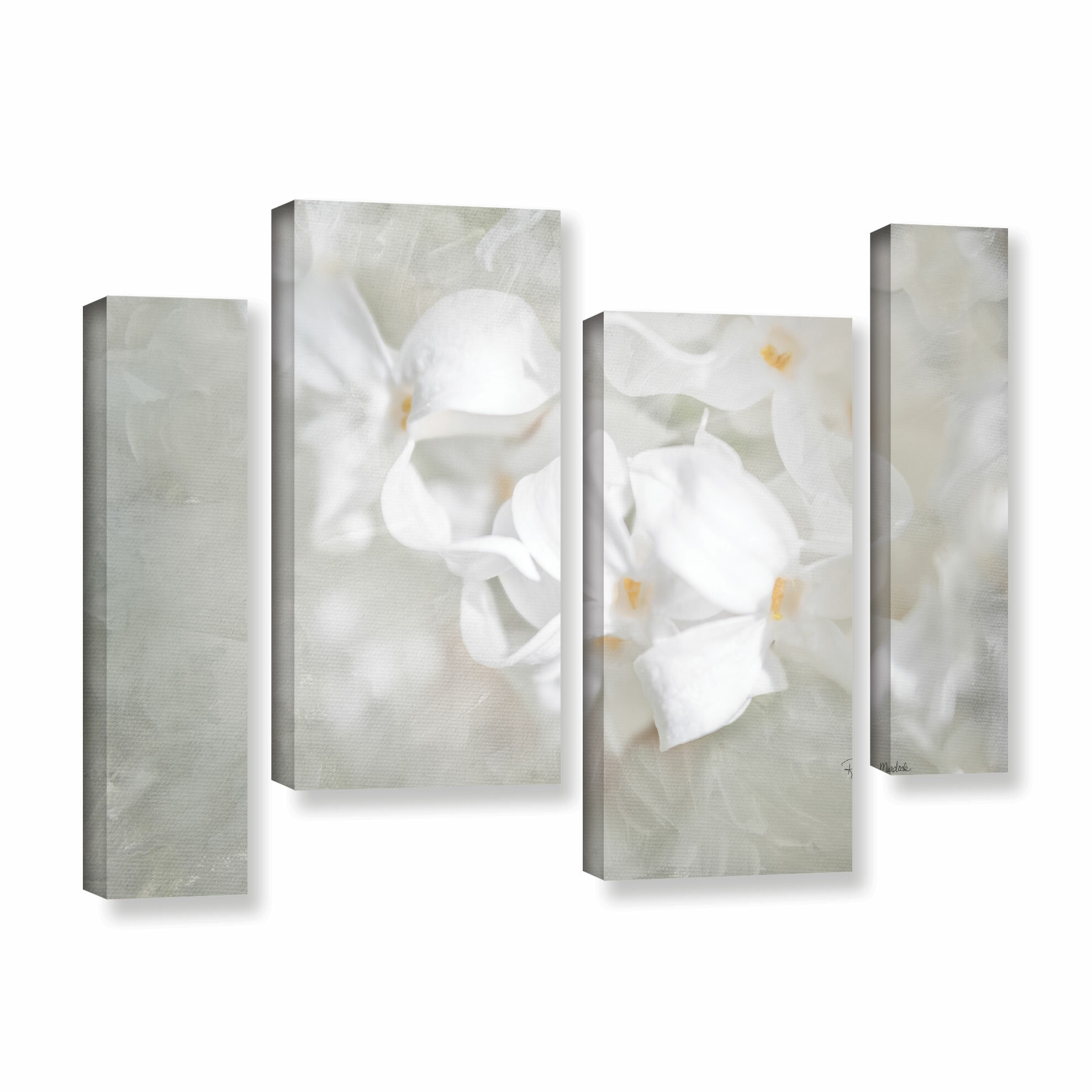 Alcott Hill White Lilac I 4 Piece Painting Print On Gallery Wrapped Canvas Set Wayfair