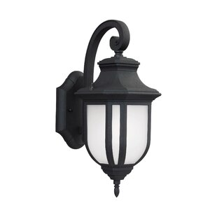 Fleur De Lis Living Teri 1-Light Outdoor Wall Lantern