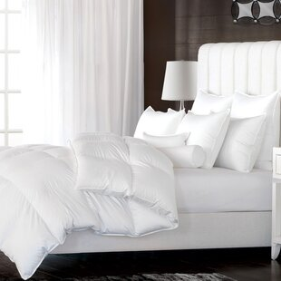 All Season Down Duvet Insert by Alwyn Home Discount