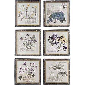 Pressed Flowers Framed Graphic Art Print (Set of 6)