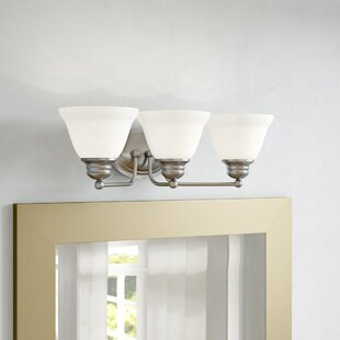 Canty 3-Light Vanity Light by Winston Porter