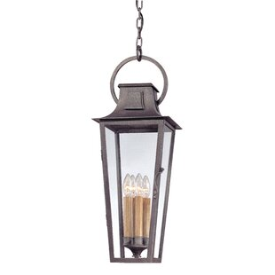 Darby Home Co Sutton 4-Light Outdoor Hanging Lantern