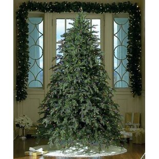 Outdoor Christmas Tree With Lights.Outdoor Christmas Trees You Ll Love In 2019 Wayfair