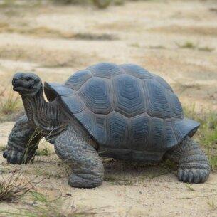 Hi-Line Gift Ltd. Tortoise Statue