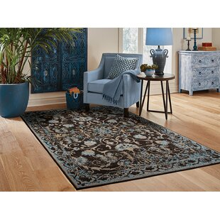 Resendiz Brown Indoor/Outdoor Area Rug