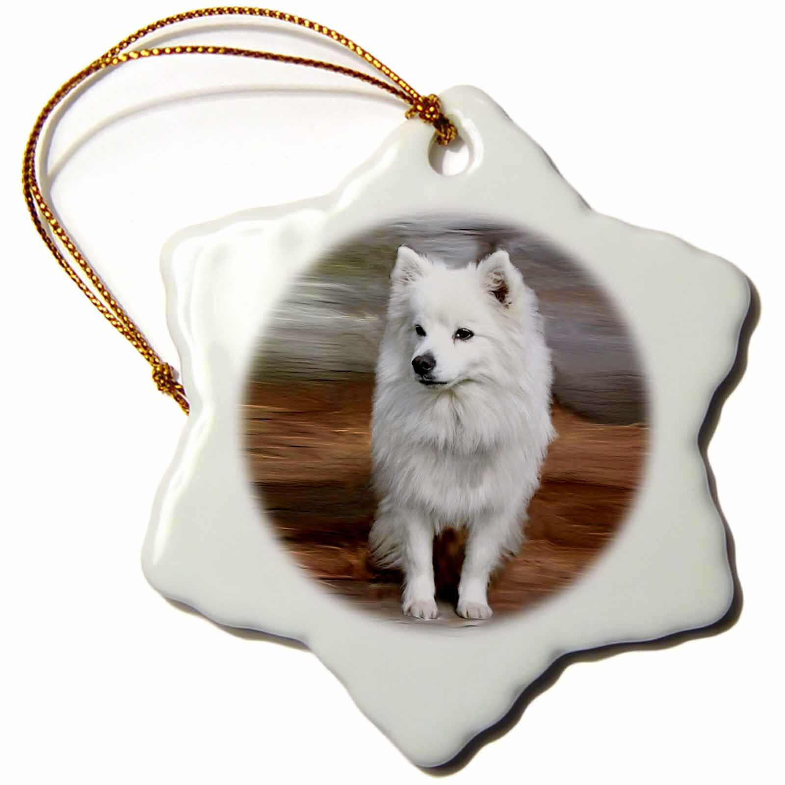 The Holiday Aisle American Eskimo Toy Dog Holiday Shaped Ornament Wayfair