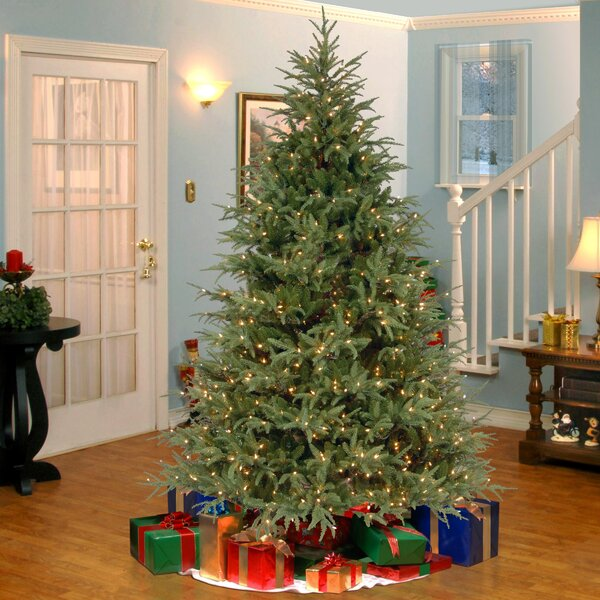 7.5' Frasier Green Artificial Christmas Tree with 1000 Clear Lights ...