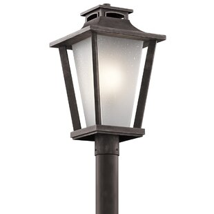 Botello 1-Light Lantern Head by Darby Home Co
