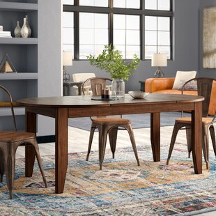Trent Austin Design Caracara Counter Height Extendable Solid Wood Dining Table
