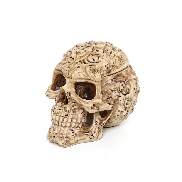 Skull Box Wayfair