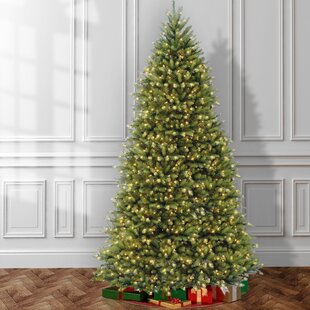 Hinged 12' Green Fir Artificial Christmas Tree with 1500 Clear Lights