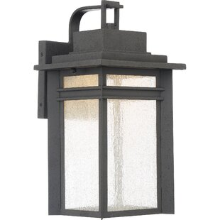 Brayden Studio Olveston LED Outdoor Wall Lantern