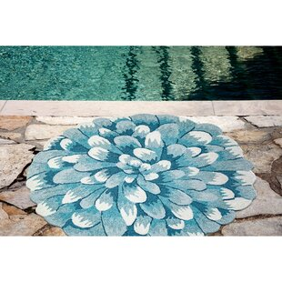 Robbie Hand-Tufted Aqua Indoor/Outdoor Area Rug