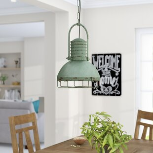 Gracie Oaks Hillary 1 Light Inverted Pendant