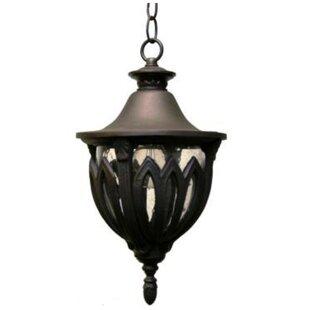 Alcott Hill Phillipstown 3-Light Outdoor Hanging Lantern