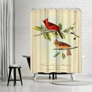 Adams Ale Red Cardinal Single Shower Curtain