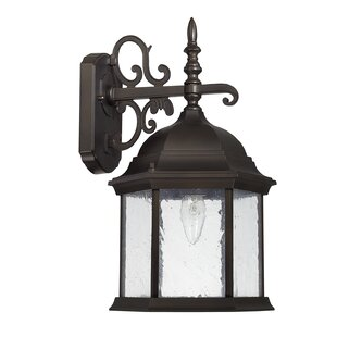 Hearne 1-Light Outdoor Wall Lantern