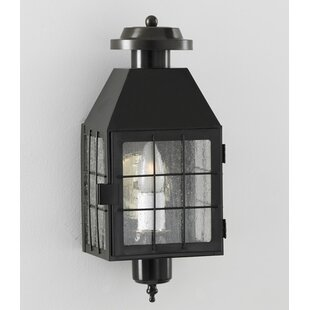 Hailie 1-Light Outdoor Flush Mount
